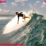 Bali Surf Report – September 20 2006