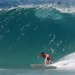 Palm Beach Boardriders turn 40yrs Old