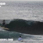 Todays Bali surf and weather report 25th Jan '10