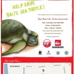Sea Turtles at Kuta Beach will have a brighter future