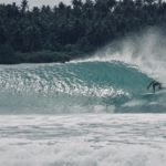 NIAS LATE SEASON PHOTO GALLERY