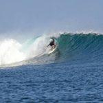 G-LAND SURF REPORT, Joyo's G-Land Surf Camp 28th June 2018