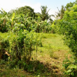 Opportunity in Bali to own a 1075sqr meter block of land with ocean view